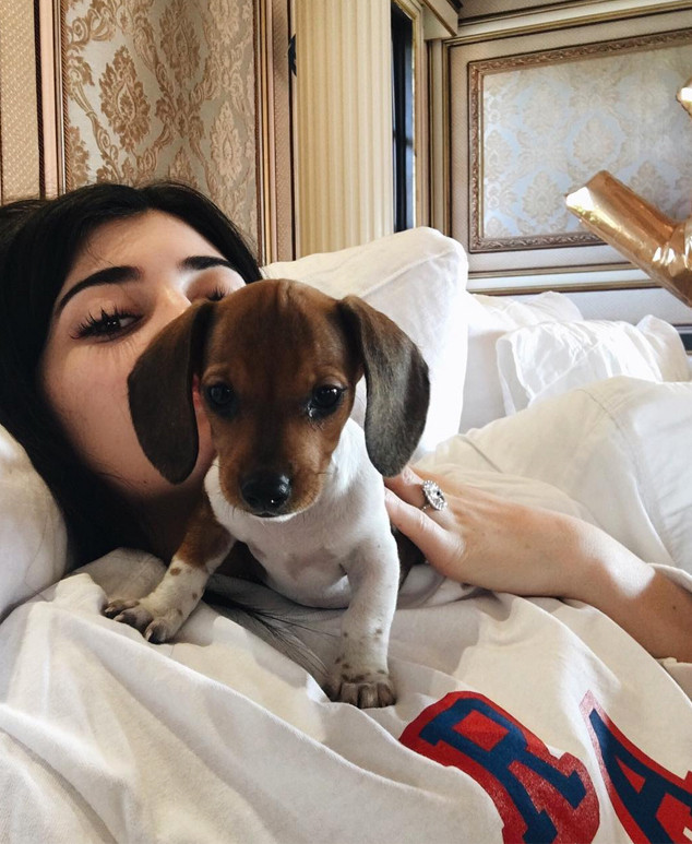 Kylie Jenner Welcomes a New Addition to Her Family: See Her