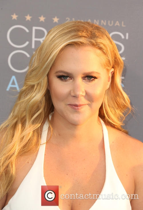 Amy Schumer Responds Magnificently To Heckler During