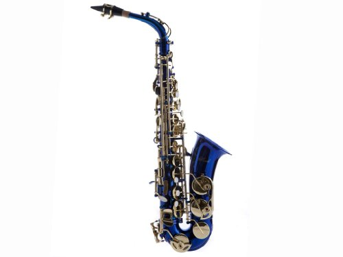 Hawk WD-S416-BL Student Alto Saxophone with Case,