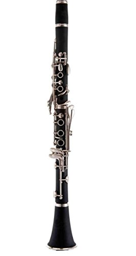 Band Director Recommended Student Bb Clarinet