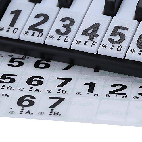 Transparent 49 61 Key Electronic Keyboard 88 Key Piano