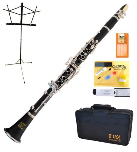 Bridgecraft WCL-GBK1 Apprentice Series Bb Clarinet Package