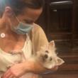 Kate Beckinsale 'heartbroken' After Her Dog Dies